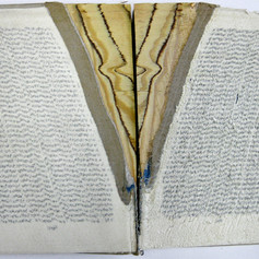 Altered found book