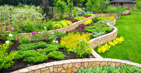 What Type of Landscaper Do You Need?