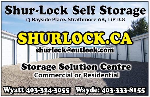 Shurlock storage