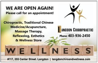 Langdon Chiropractic