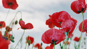 Military Remembrance Days Around the World
