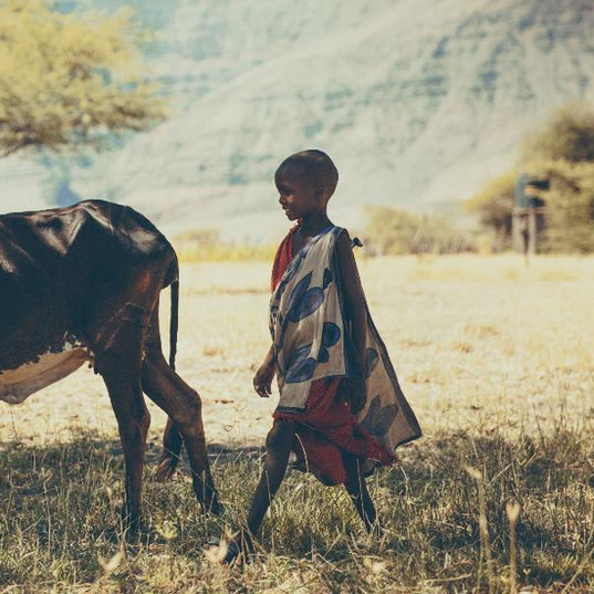masaai tanzania, masais tribes tanzania, lake natron