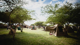 Camping at Maasai Giraffe Eco lodge located in Tanzania, near Arusha and Loliondo. We are on the road to the Serengeti, Ngorongoro and Tarangire parks. We stand for ecotourism, responsible tourism and nature conservation. We offer cultural stays and discover the Maasai community in an unusual place. Many activities are proposed: treks, tailor-made safaris, volcano climbing, immersion in a Maasai family, visit of a Maasai village, Maasai barbecue. Close to pink flamingos, zebras, giraffes and many birds.