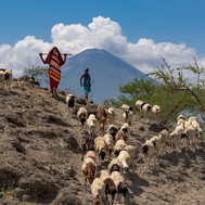 Trek with the massai community at the Maasai Giraffe Eco Lodge