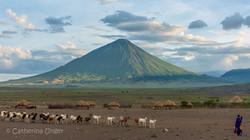 Ol Doinyo Lengai volcano in front of the Maasai Giraffe Eco Lodge