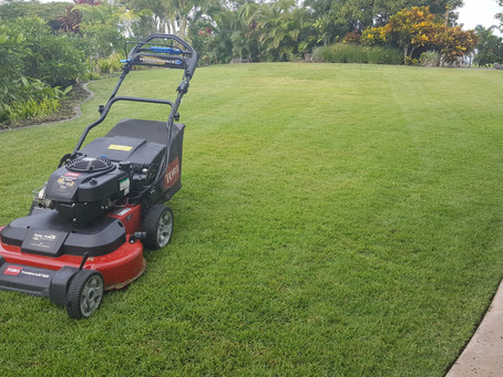 Mowing Tips For A Healthier Lawn