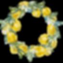 Guirnalda floral 6