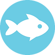 Small logo of Curious Fish Websites