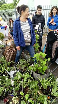 Kirsty Dickie gardener