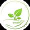 FAVPNG_plant-clip-art_E50LKHgm.png