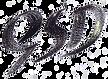 GrantSignature_edited_edited_edited.png