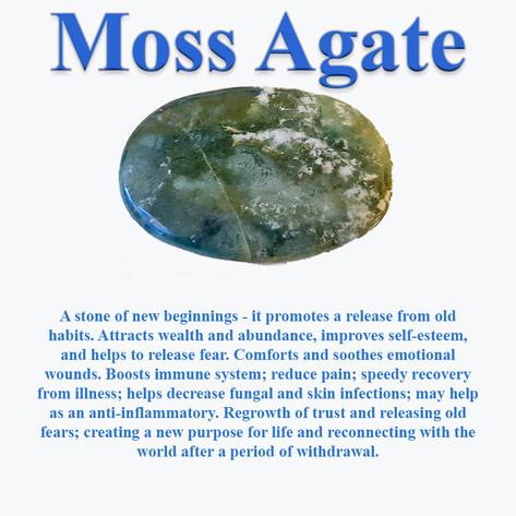MossAgateInfo.jpg