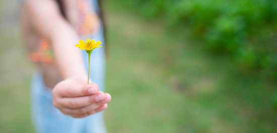Young child holding a flower
