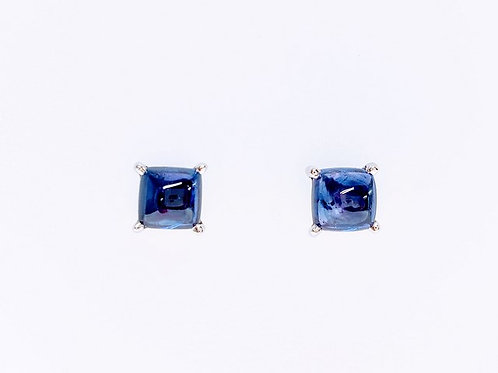 GEP100-14KW-SQ-CAB-BLUE-SAP