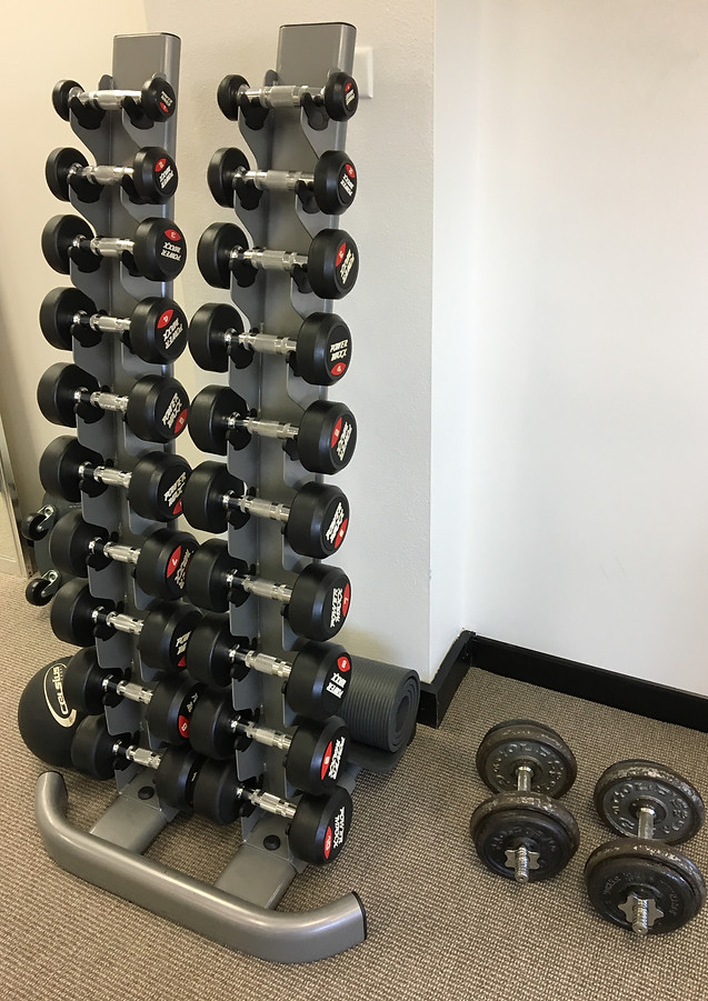 Clinic Weights Area
