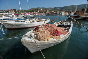 Adriatic Coastline private tours