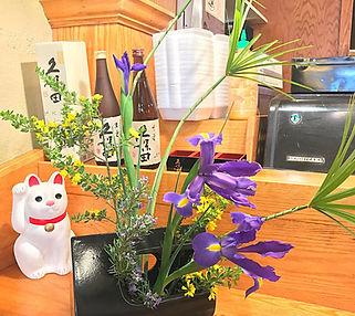 Hotaru Japanese Restaurant Sushi Bar