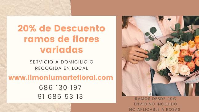 limonium floristeria promo noviembre.png