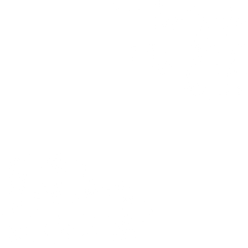 fiore bianco.png