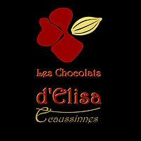 Logo Chocolats d'Elisa