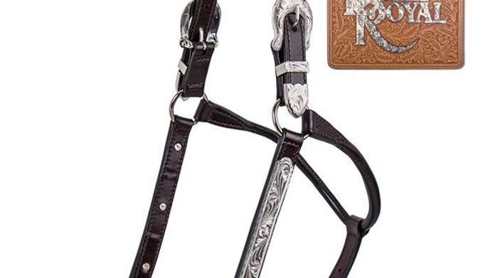 Billy Royal® Stella Fitted Show Halter