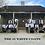 Thumbnail: #The15WhiteCoats- 10x40 Mounted (Three Poses)