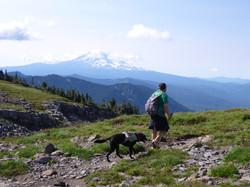 Type 2 with Mt Rainier