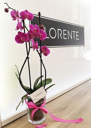 Mostrador flor tienda.jpeg
