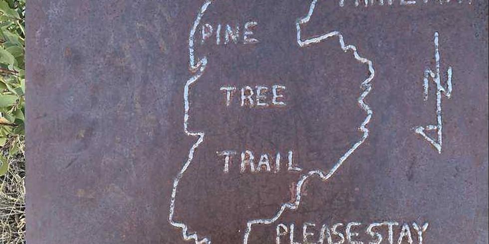 Pine Tree Loop, Organ Mountains Hike