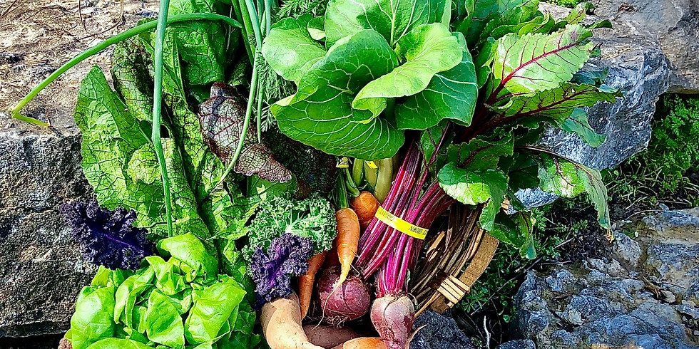 SOLD OUT! Flexible Local Farm Box: 3/28 - 3/29 (Pickup Saturday or Sunday)