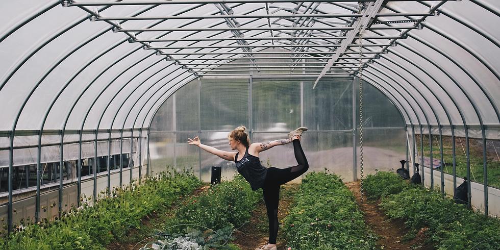 Wellness Class - Restorative Yoga