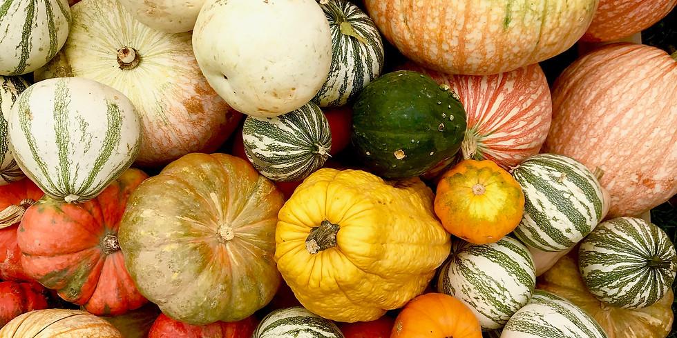 Autumn Wellness Day