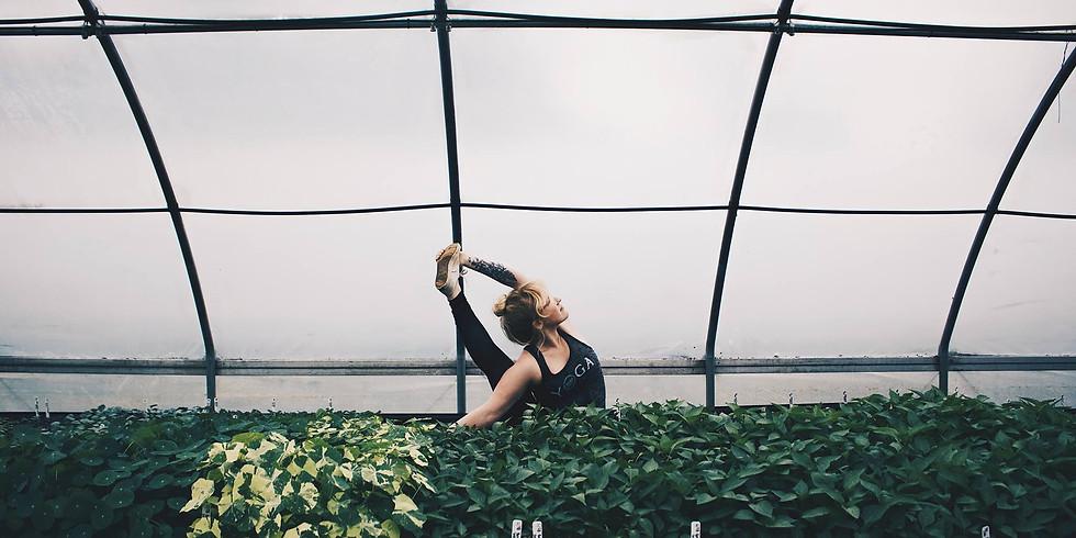 Sunset Yoga + Herbs on the Farm