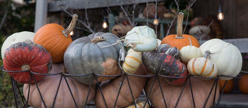 5 Simple and Unique Ways to Decorate with Pumpkins