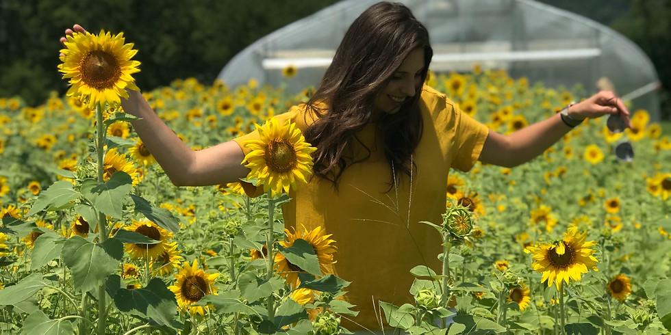 Sunflower Field Tour - FREE!