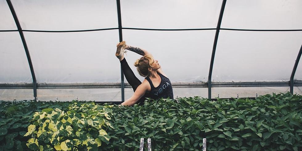 Wellness Wednesday - Restorative Yoga on the Farm