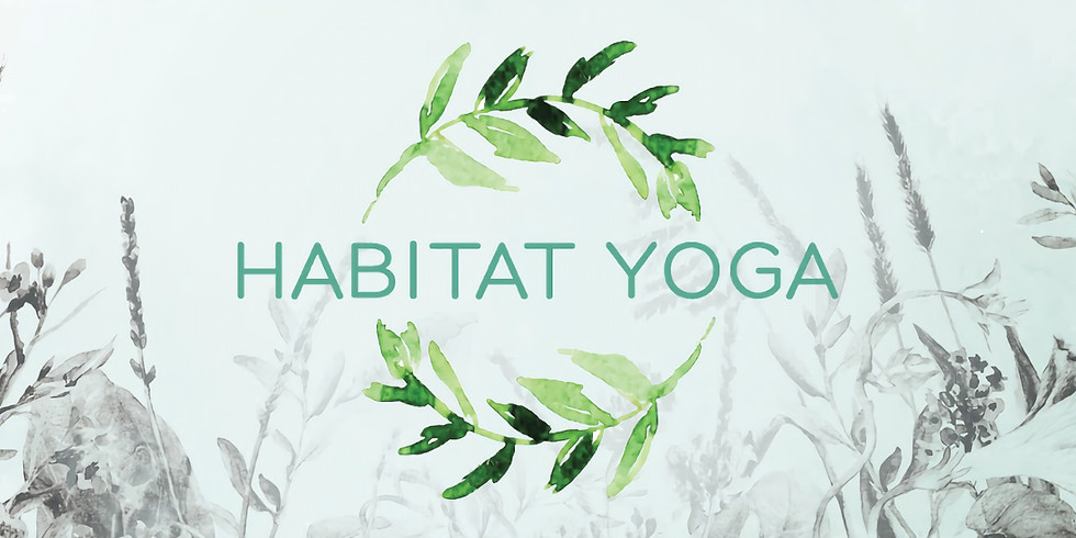 Yoga Class for Adults + Kids