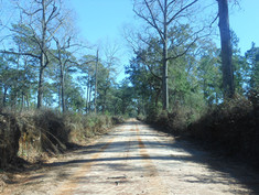 Georgia-Forks-Roads-Heritage-Roads.jpg