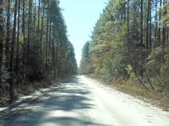 West-Lake-Road-North-Florida.jpg