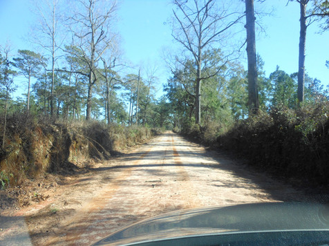 Georgia-Forks-Rd-North-Floirda.jpg