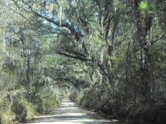 Simpson-Rd-Heritage-Roads.jpg