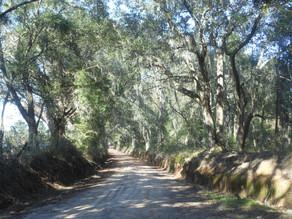 bippus-road-Jefferson-County.jpg