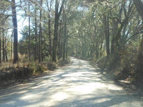 West-Lake-Road.jpg