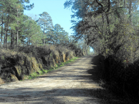 Simpson-Road-Jefferson-County-Florida.jp