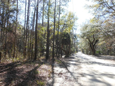 old-plank-road-Heritage-Roads.jpg