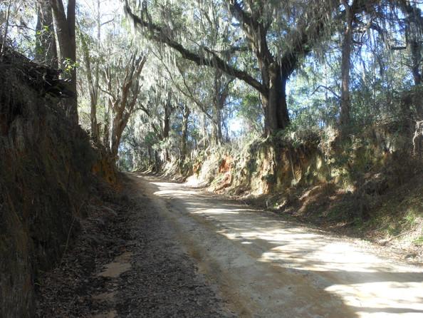 bippus-road-Heritage-Roads.jpg