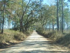 Cocroft-Road-Jefferson-County.jpg
