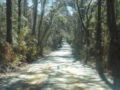 Cocroft-Road-North-Florida.jpg