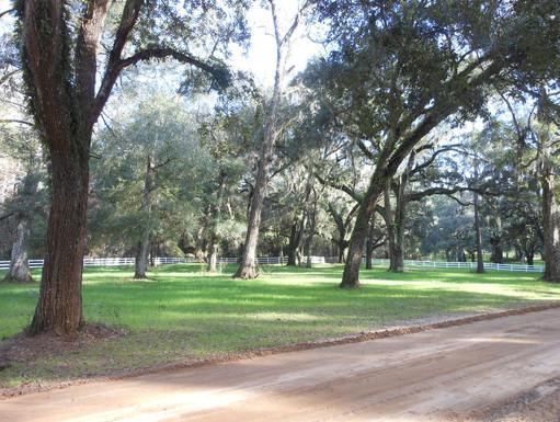 Avalon-Plantation-Heritage-Roads.jpg