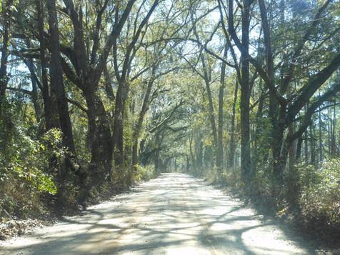 West-Lake-Road-Heritage-Roads.jpg